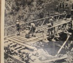 Building a bridge Mt Kenya 1961